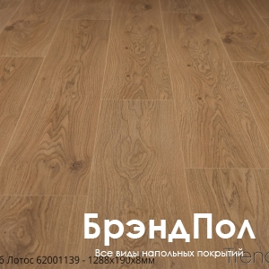 ДУБ ЛОТУС B7007