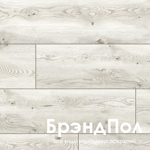 Дуб Осгор - 49770