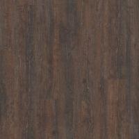 Дуб коричневый 42076382
