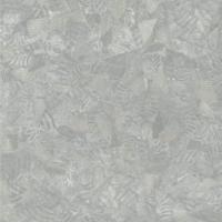 Корал 791M