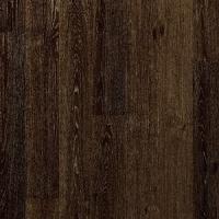 Дуб Чёрный - UC 3489